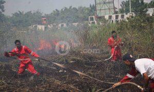 Sejumlah pemadam kebakaran dari Badan Nasional Penanggulangan Bencana (BNPB) berusaha memadamkan kebakaran yang terjadi di kawasan lahan gambut Ogan Ilir Sumatera Selatan, (10/5/2018). Dugaan sementara kebakaran diakibatkan puntung rokok dari pekerja proyek jembatan di kawasan tersebut. Ukhuwahfoto/ Nopri Ismi