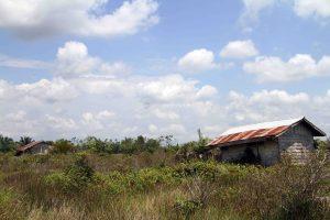 Sejumlah rumah warga transmigran yang terbangkalai setelah ditinggalkan penghuninya.