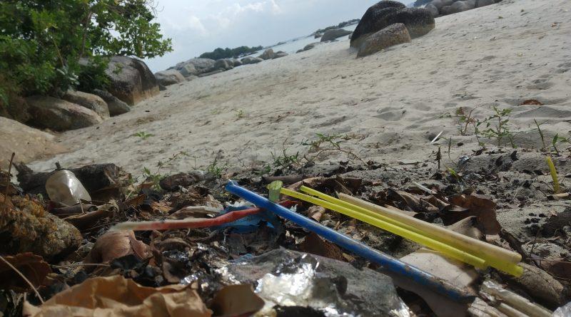 Opini: Sampah Sedotan Plastik Mengancam Biota Laut