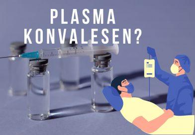 PMI Palembang  Sosialisasikan Alternatif Sembuh Tanpa Vaksin Covid-19
